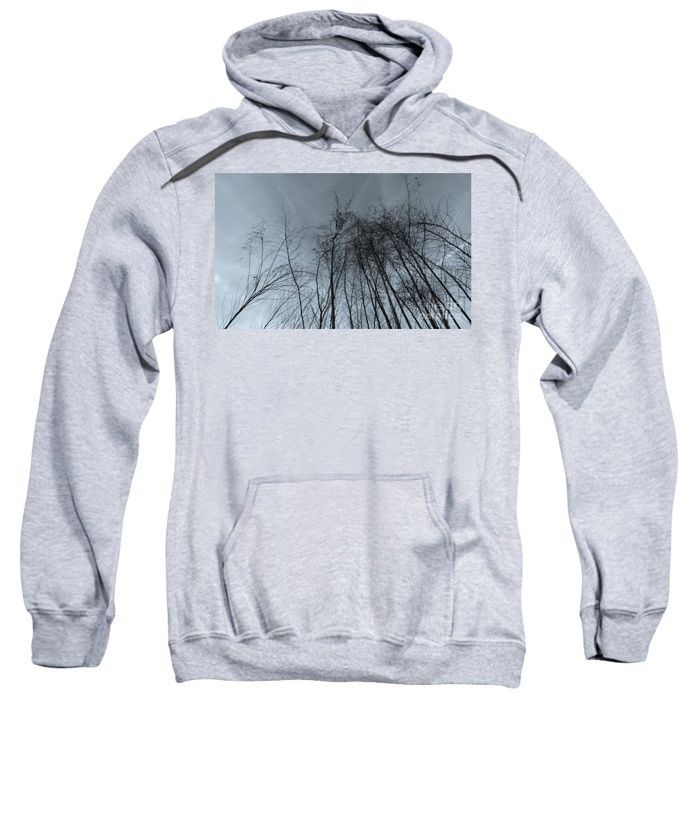 Sky Sweatshirt featuring the photograph Longing by Amanda Sinco