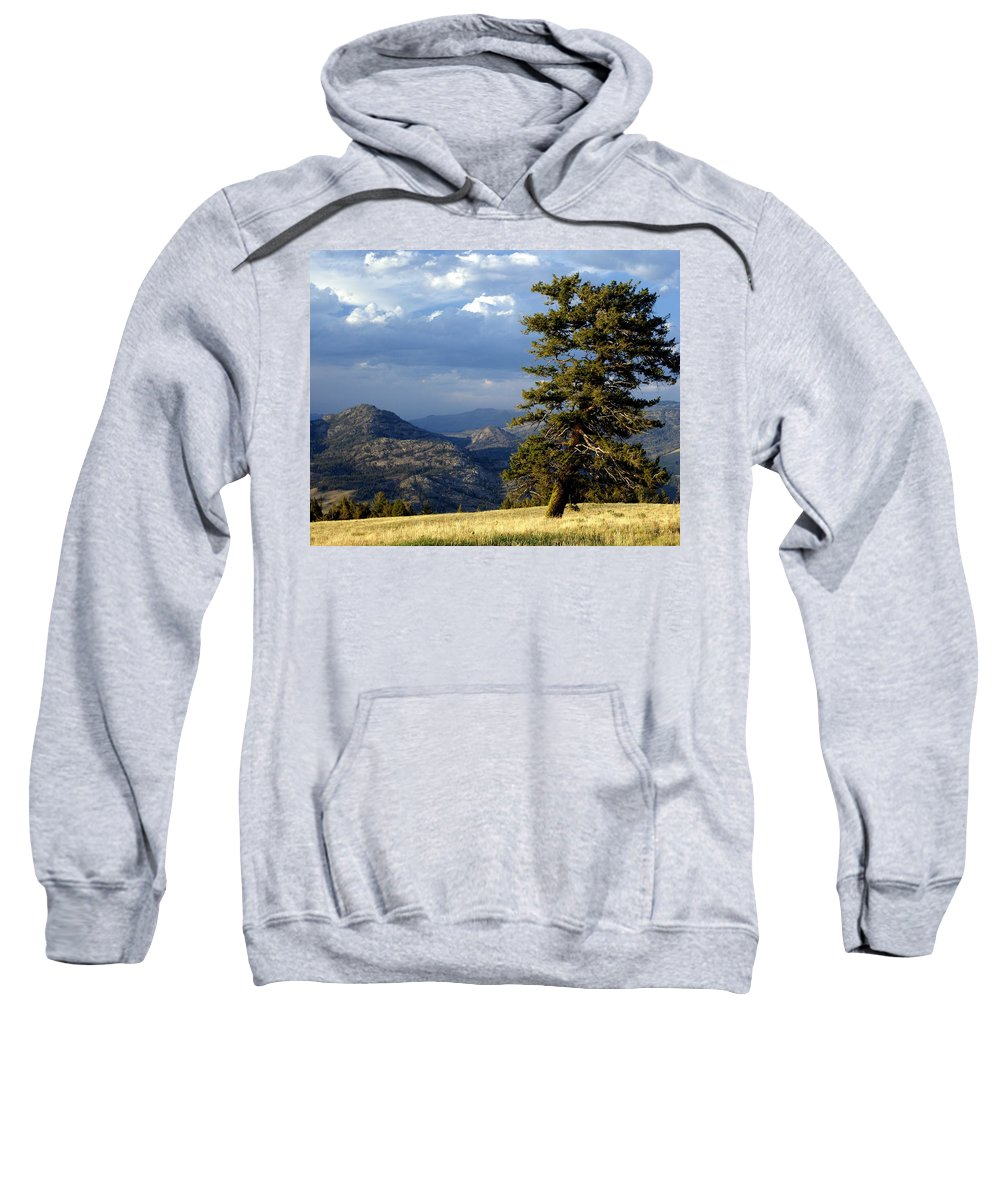 Yellowstone National Park Sweatshirt featuring the photograph Lonly Tree by Marty Koch