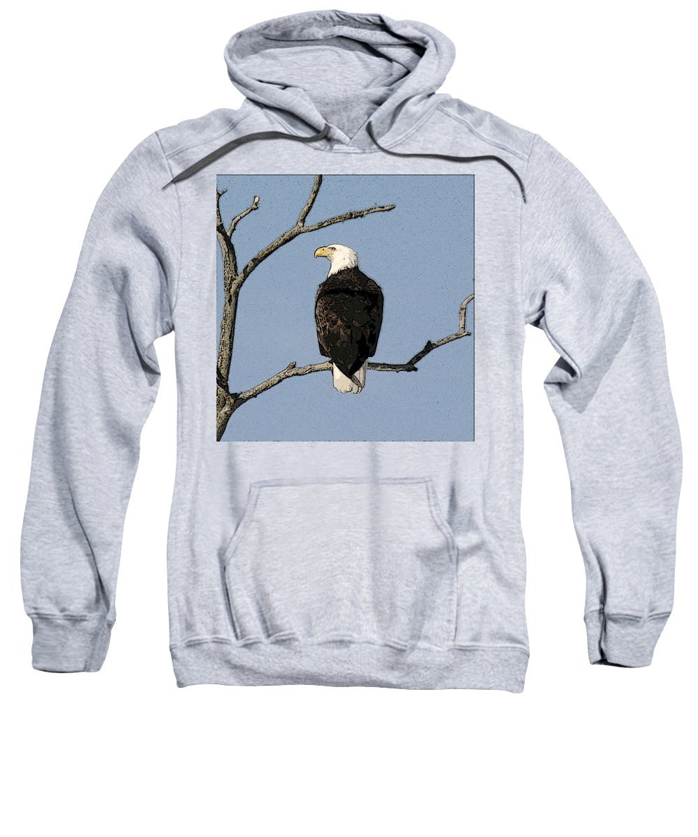 Eagle Sweatshirt featuring the photograph Look Out by Robert Pearson