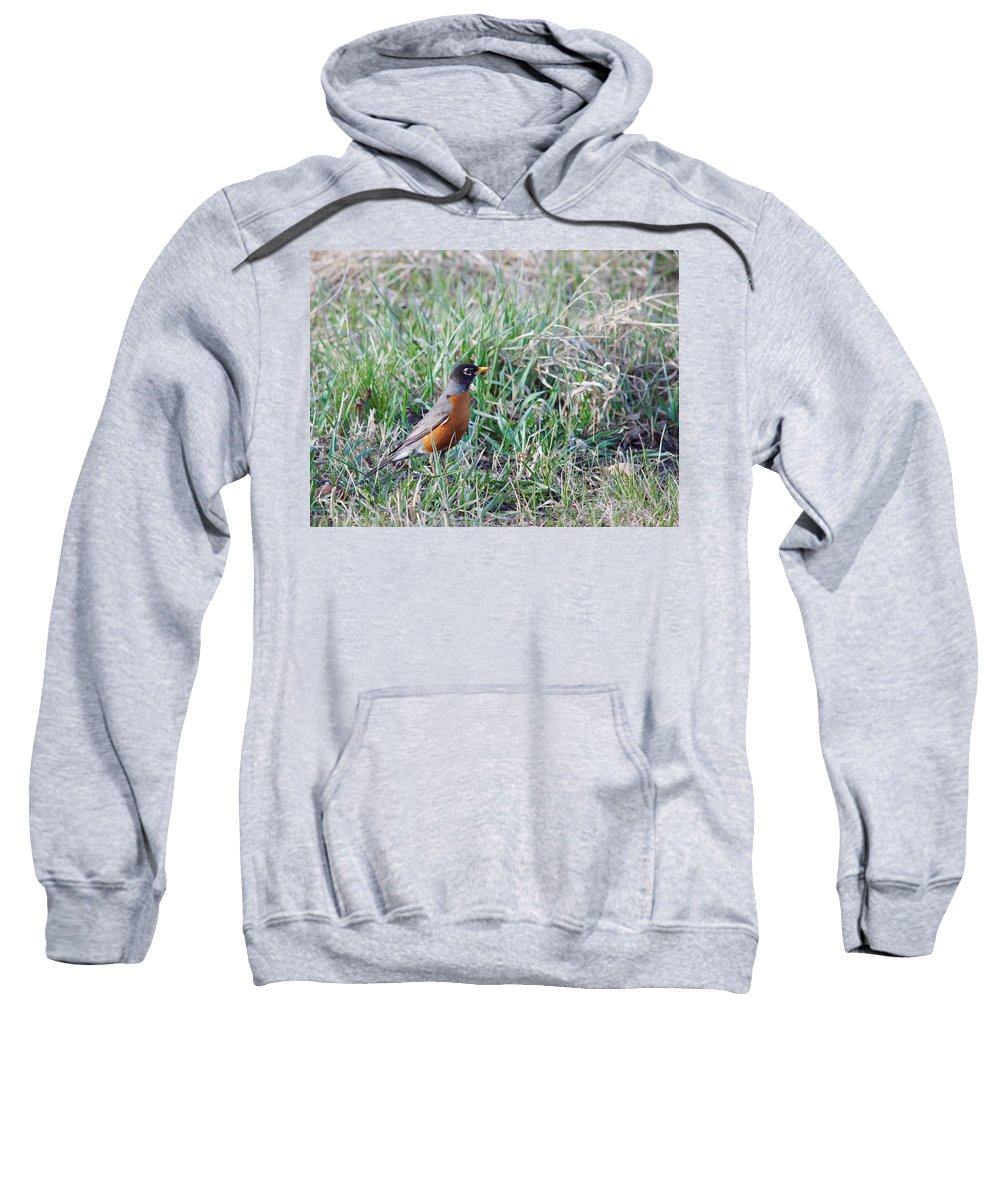 Nature Sweatshirt featuring the photograph Looking For Lunch by Crystal Massop
