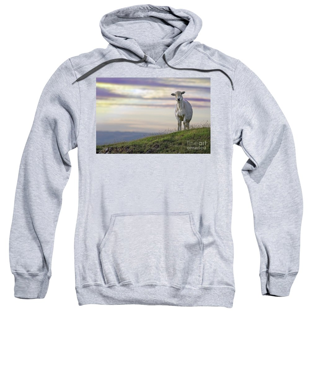 Long Mynd Hill Sweatshirt featuring the photograph Looking From The Above by Angel Ciesniarska