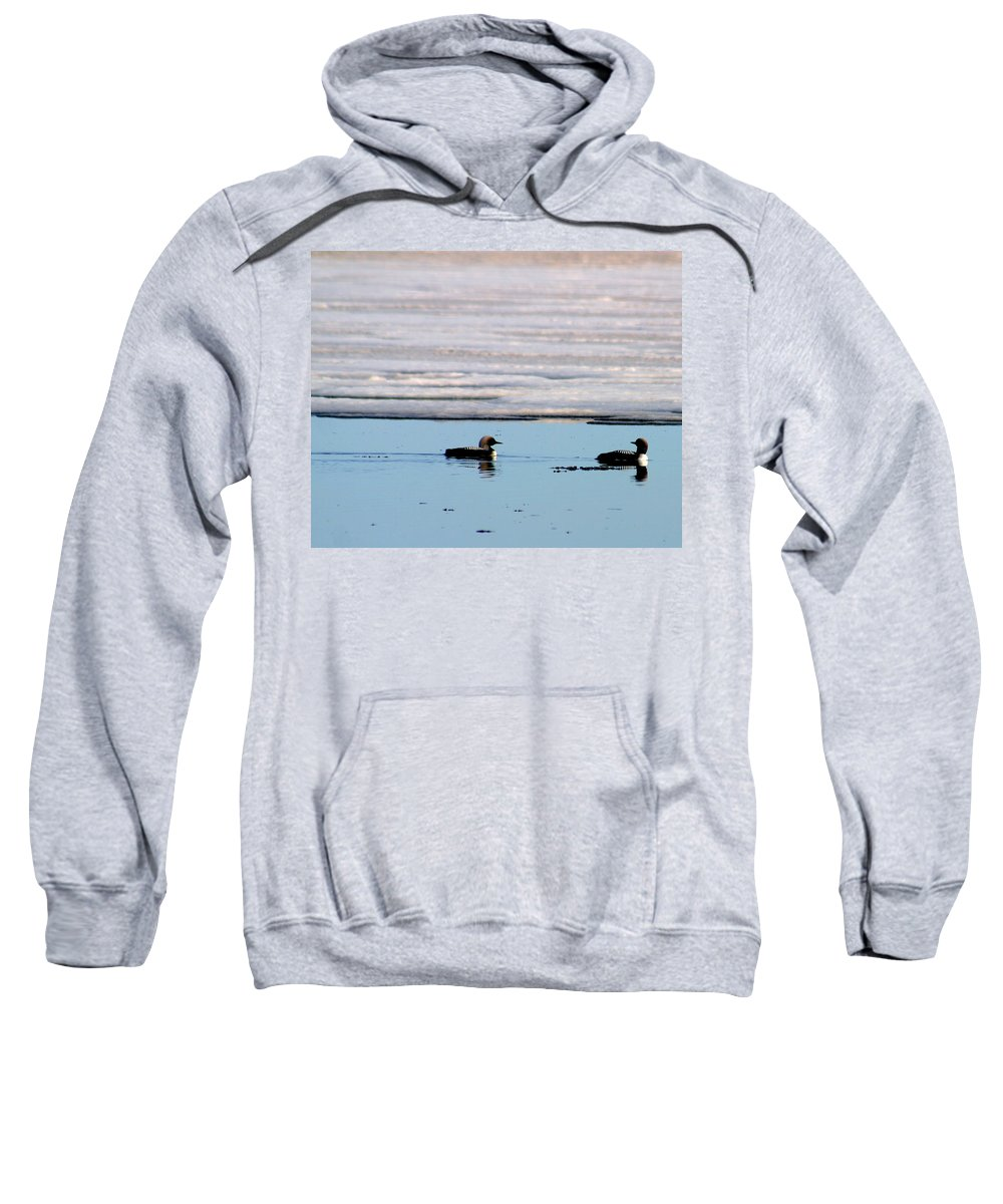 Loons Sweatshirt featuring the photograph Loon On The Arctic by Anthony Jones