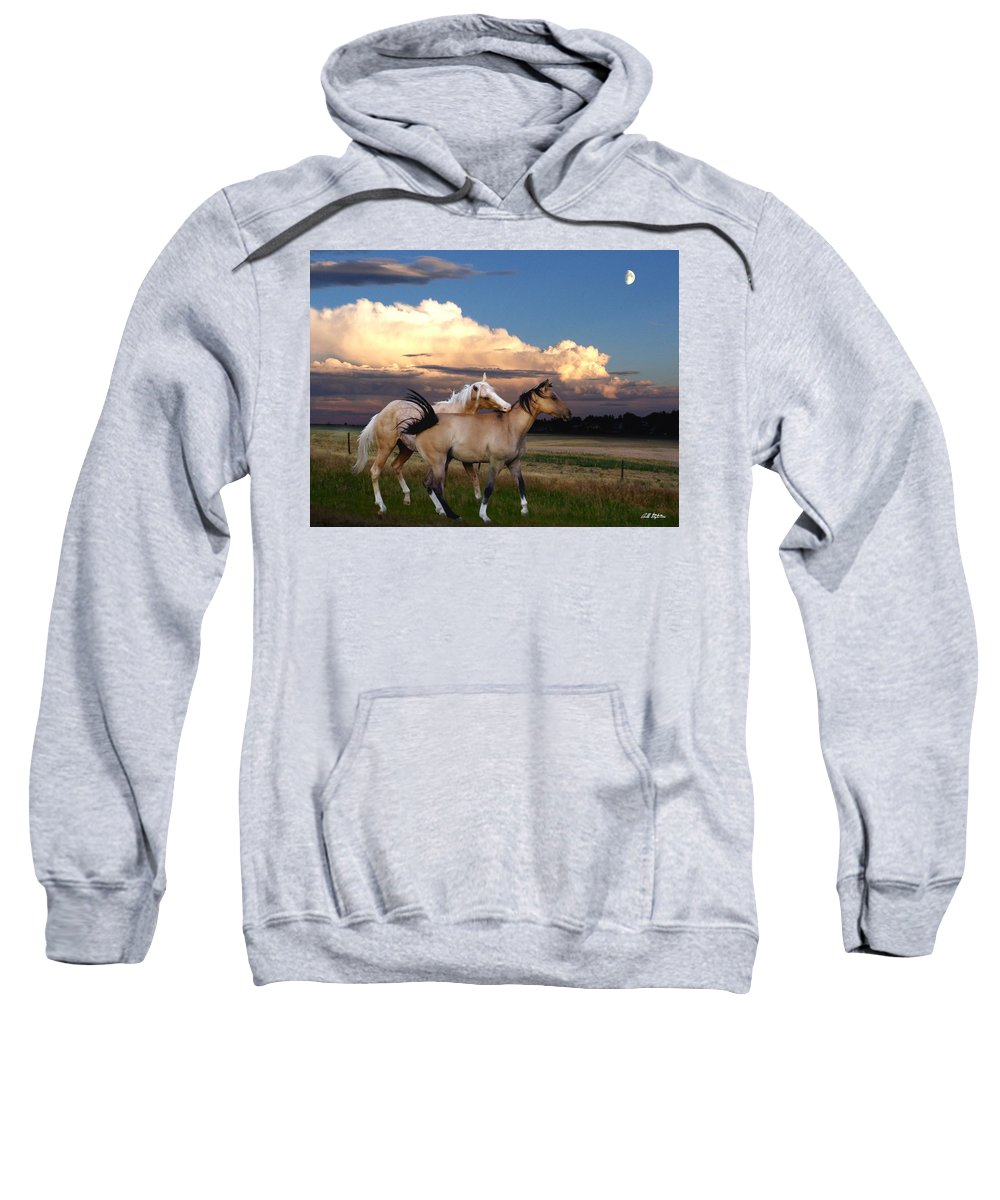 Horses Sweatshirt featuring the mixed media Love Bites by Bill Stephens