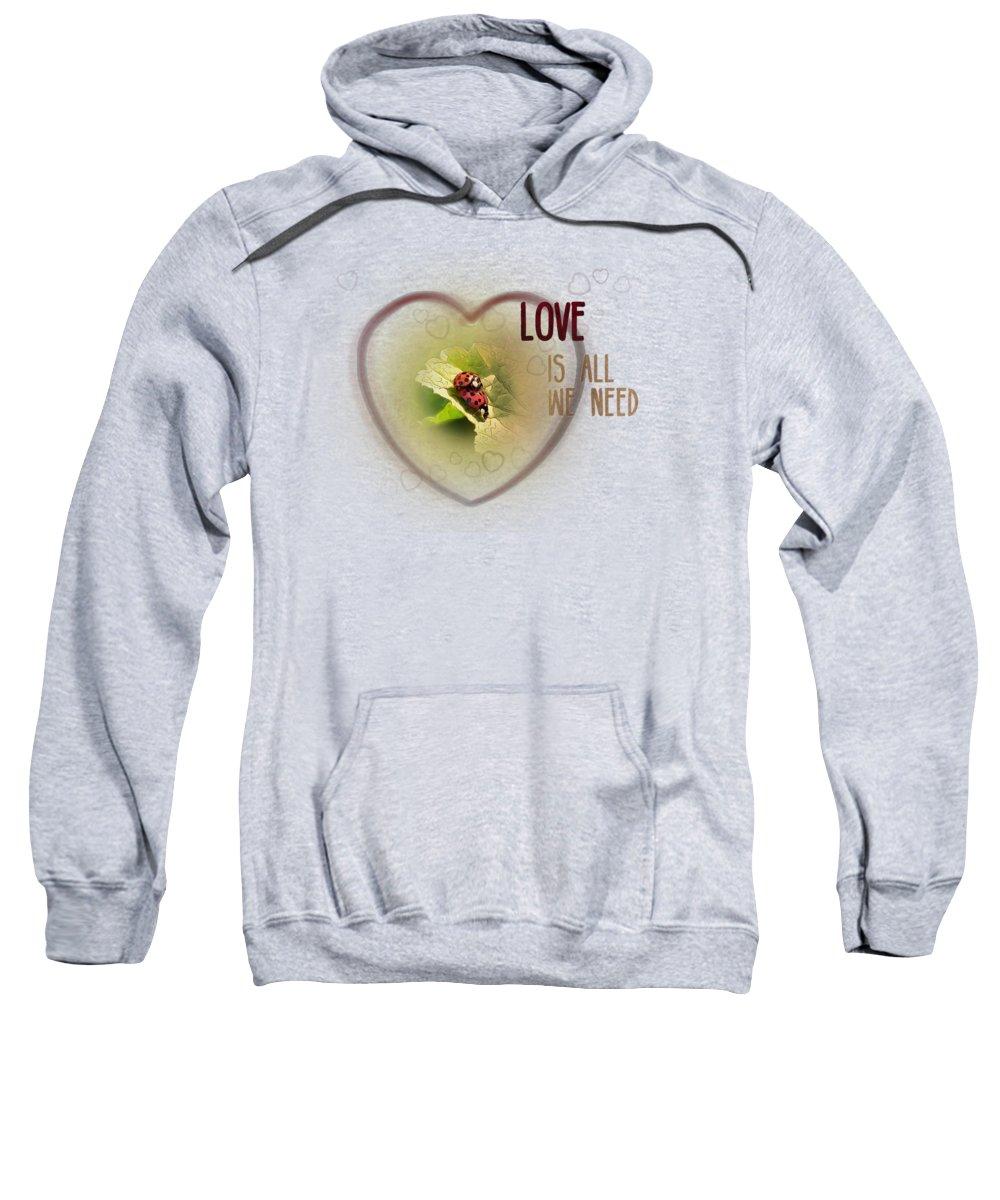 Ladybug Hooded Sweatshirts T-Shirts