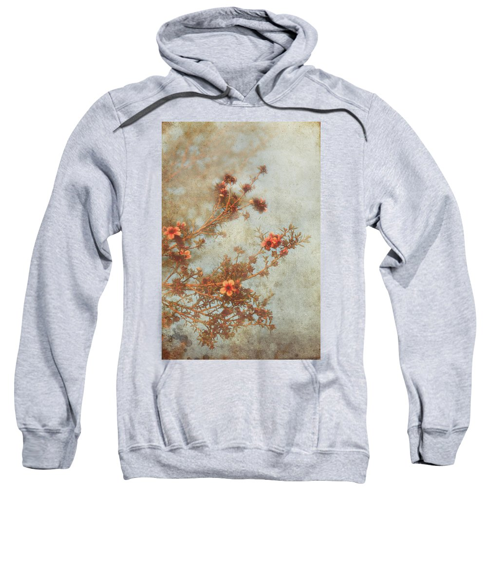 Flowers Sweatshirt featuring the photograph Love Is In Bloom by Laurie Search
