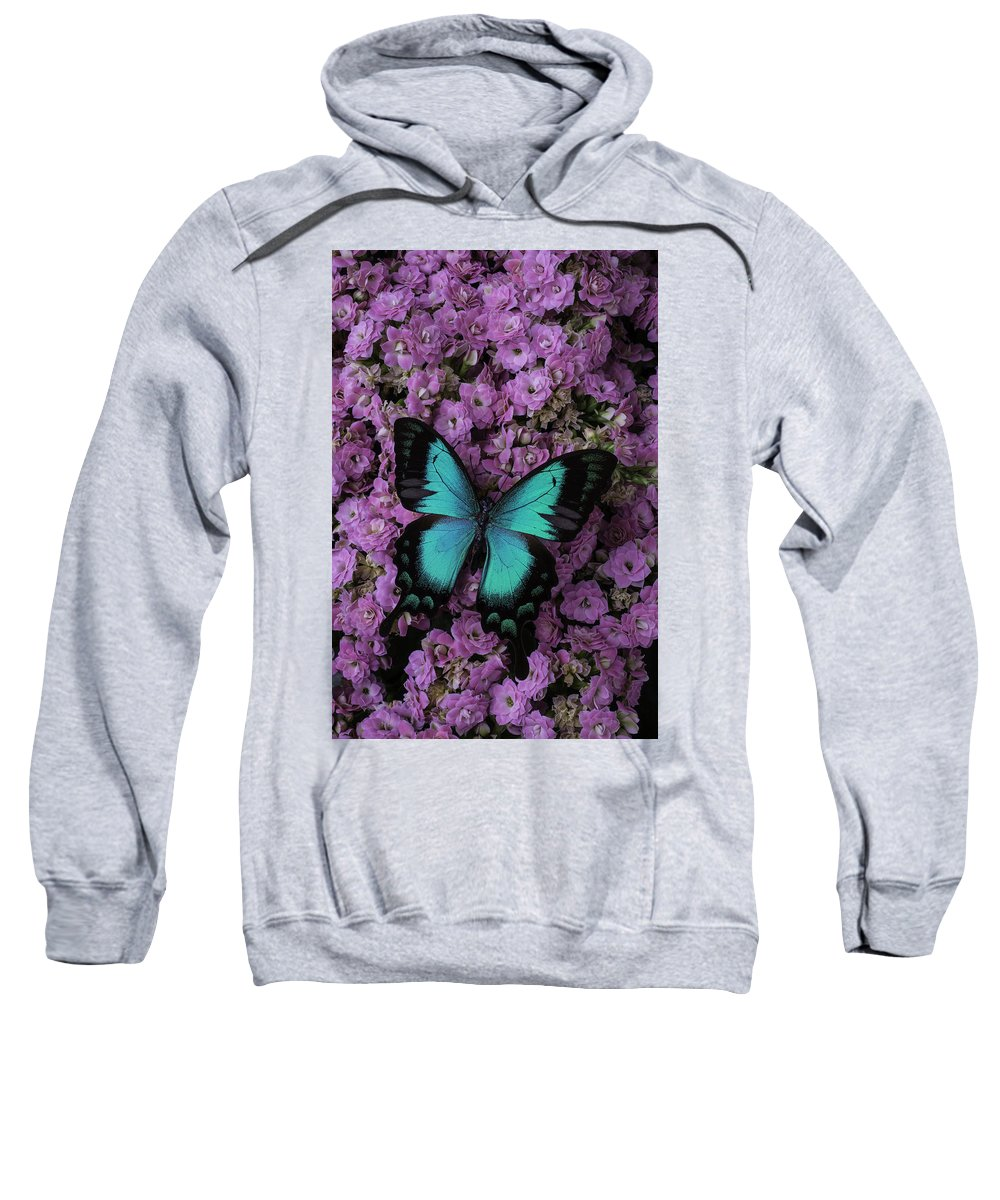 Butterfly Sweatshirt featuring the photograph Lovely Green Winged Butterffly by Garry Gay