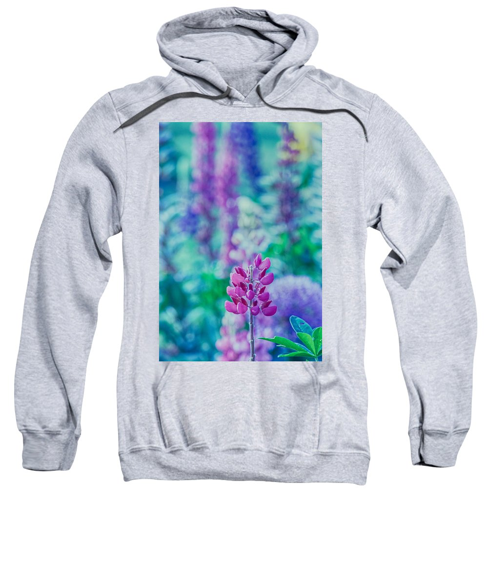 Color Photo Sweatshirt featuring the photograph Lovely Lupine by Bonnie Bruno