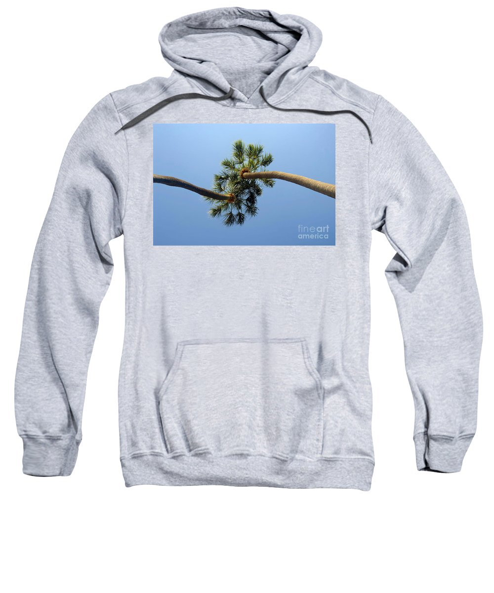 Love Sweatshirt featuring the photograph Lovers by David Lee Thompson