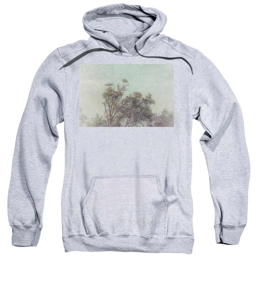 Trees Sweatshirt featuring the photograph Loving The Trees by Louise Hill