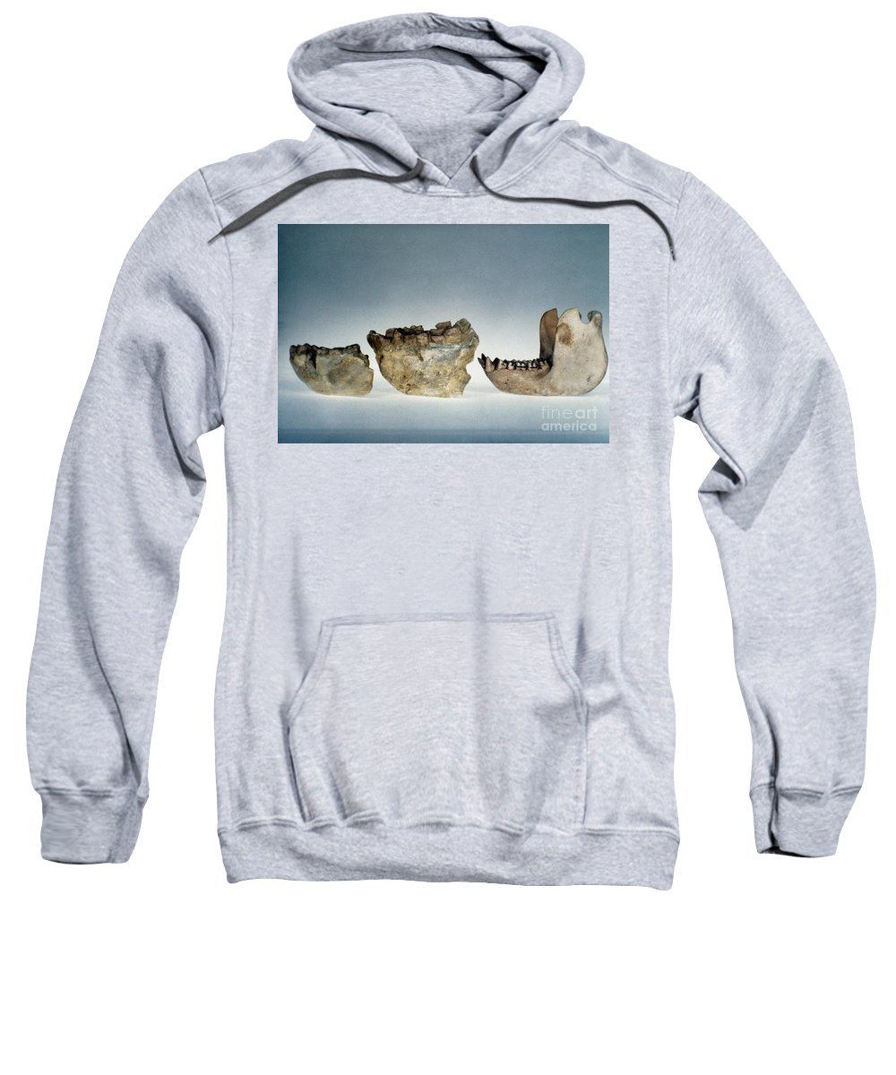 Ape Sweatshirt featuring the photograph Lower Jawbones by Granger