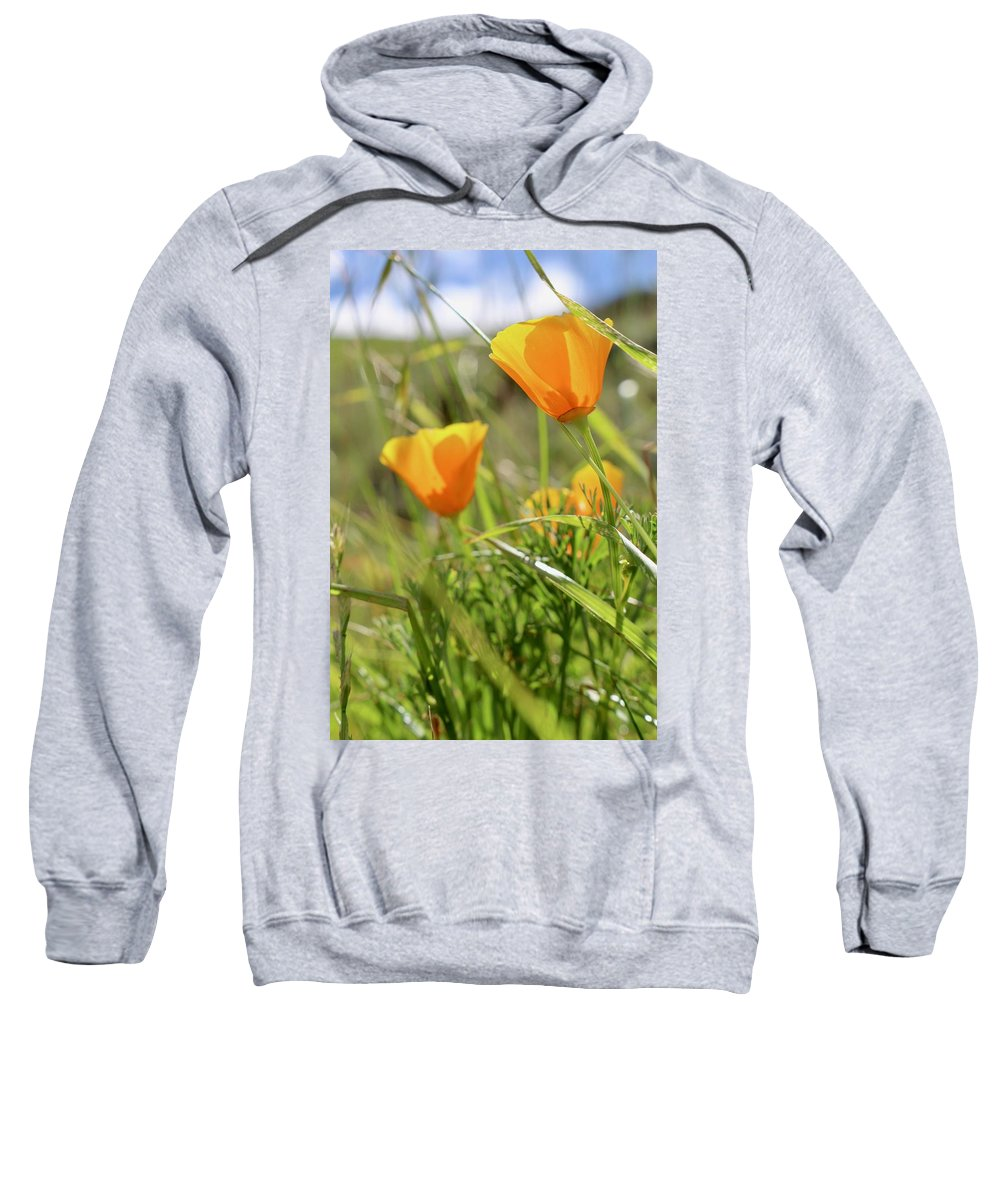 Poppies Sweatshirt featuring the photograph Luminescence by Erin Finnegan