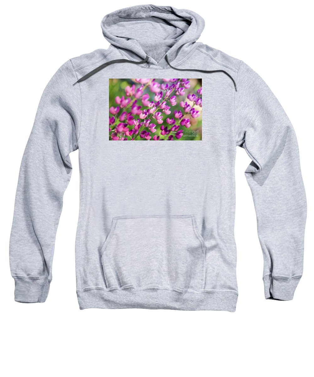 Lupine Sweatshirt featuring the photograph Lupine by Lasse Ansaharju