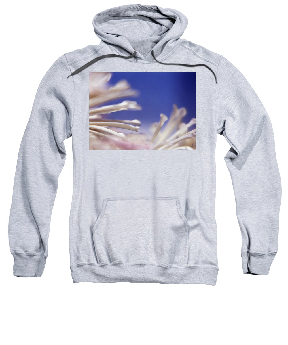 Macro Sweatshirt featuring the photograph Macro Flower 2 by Lee Santa