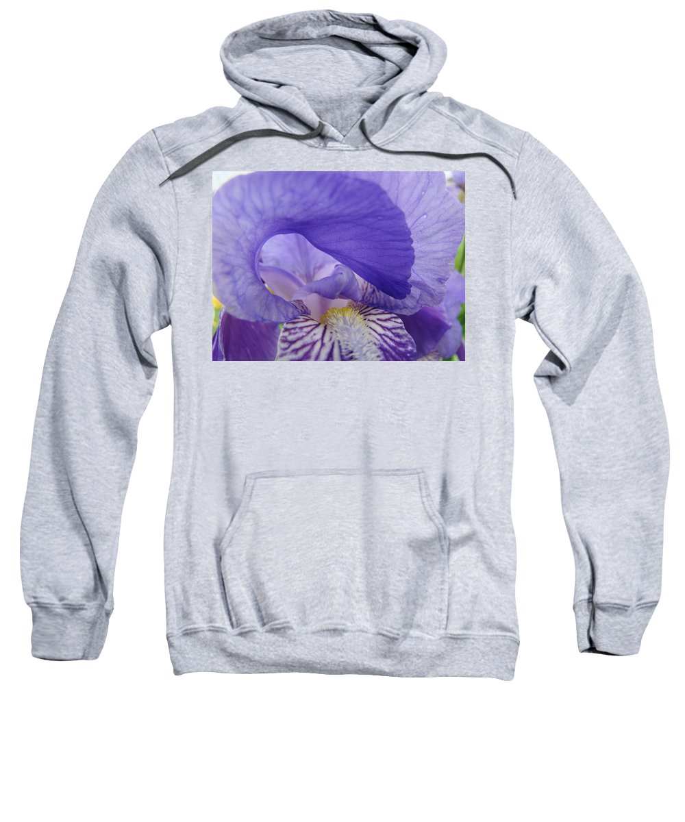 �irises Artwork� Sweatshirt featuring the photograph Macro Irises Close Up Purple Iris Flowers Giclee Art Prints Baslee Troutman by Baslee Troutman