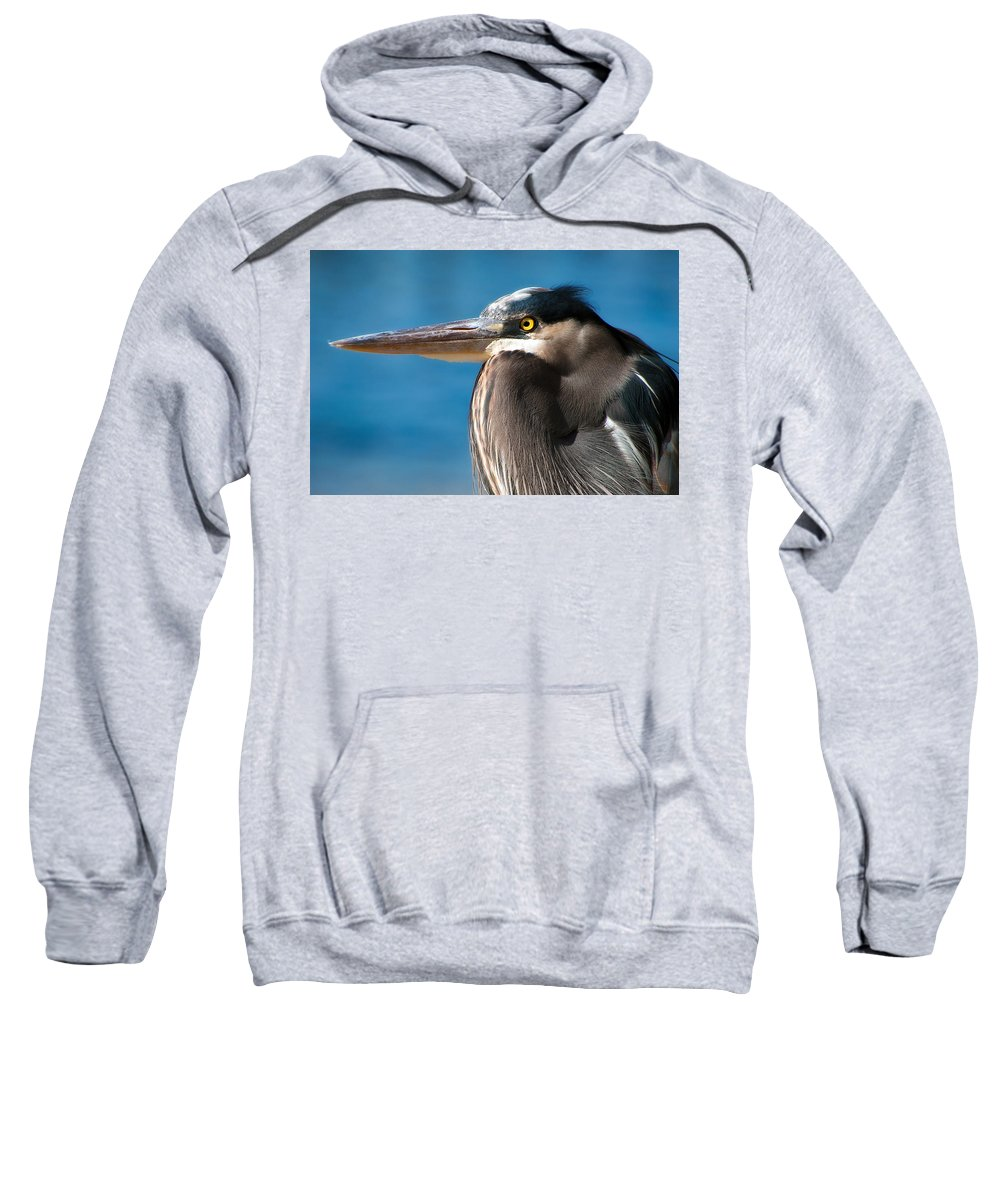 Bird Sweatshirt featuring the photograph Magnificent Blue Heron by Rich Leighton