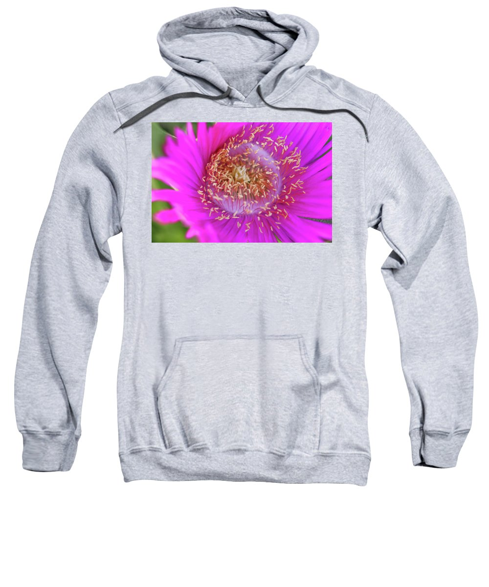 Sweatshirt featuring the photograph Magnificent Flower by Vesna Grgurevic