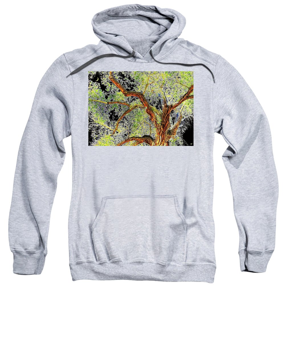 Tree Sweatshirt featuring the photograph Magnificent Tree by Will Borden