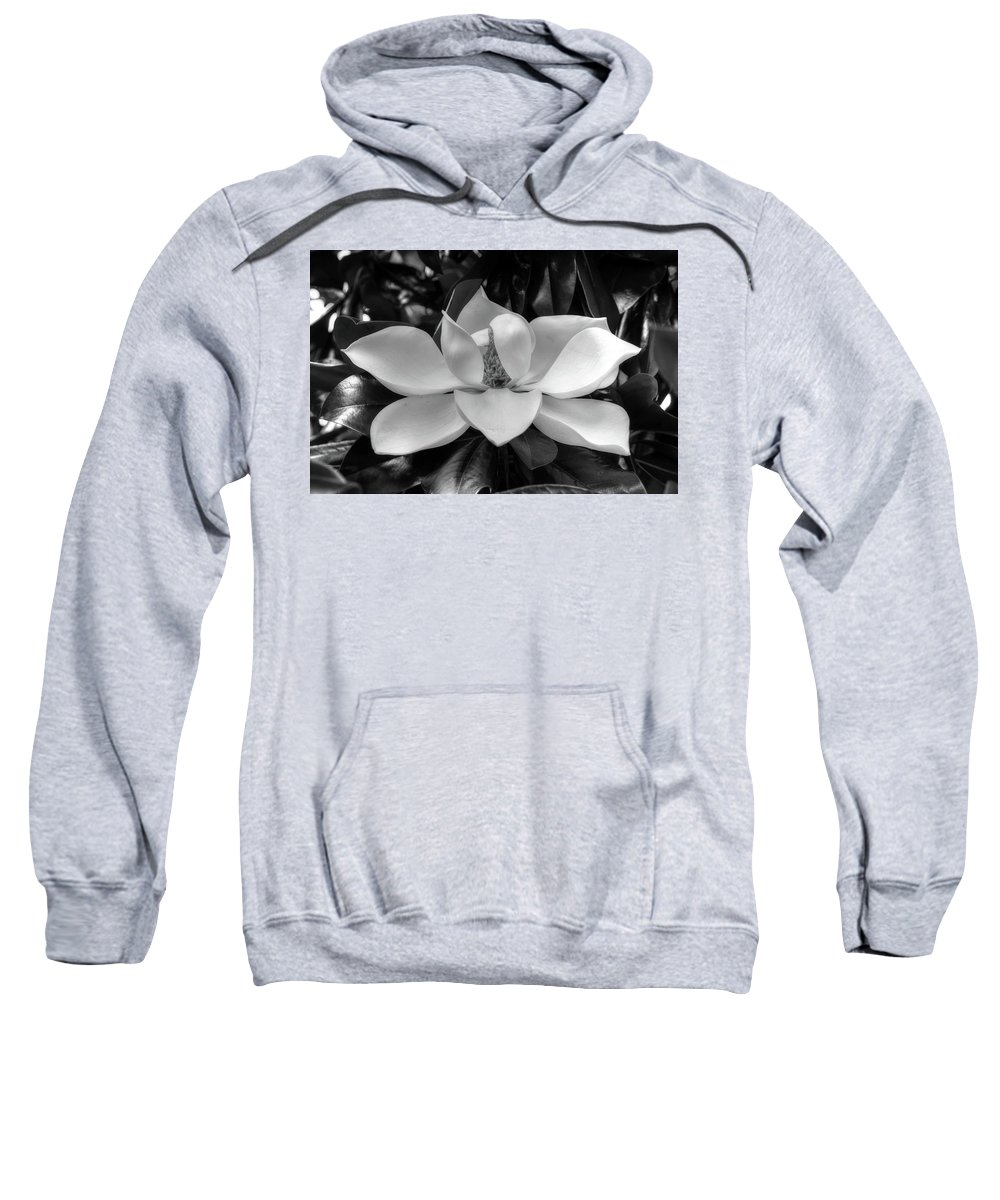 Magnolia Flower Sweatshirt featuring the photograph Magnolia Bloom B/w by Ronda Ryan