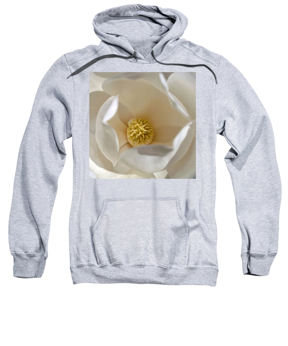 Magnolia Sweatshirt featuring the photograph Magnolia Flower by Jill Reger