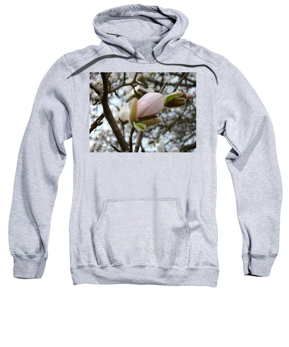 Magnolia Sweatshirt featuring the photograph Magnolia Flower Pink White 19 Magnolia Tree Spring Art by Baslee Troutman