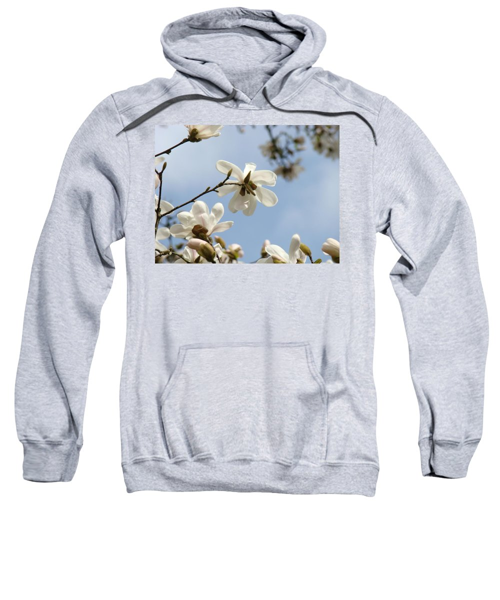 Magnolia Sweatshirt featuring the photograph Magnolia Flowers White Magnolia Tree Art 2 Blue Sky Giclee Prints Baslee Troutman by Baslee Troutman