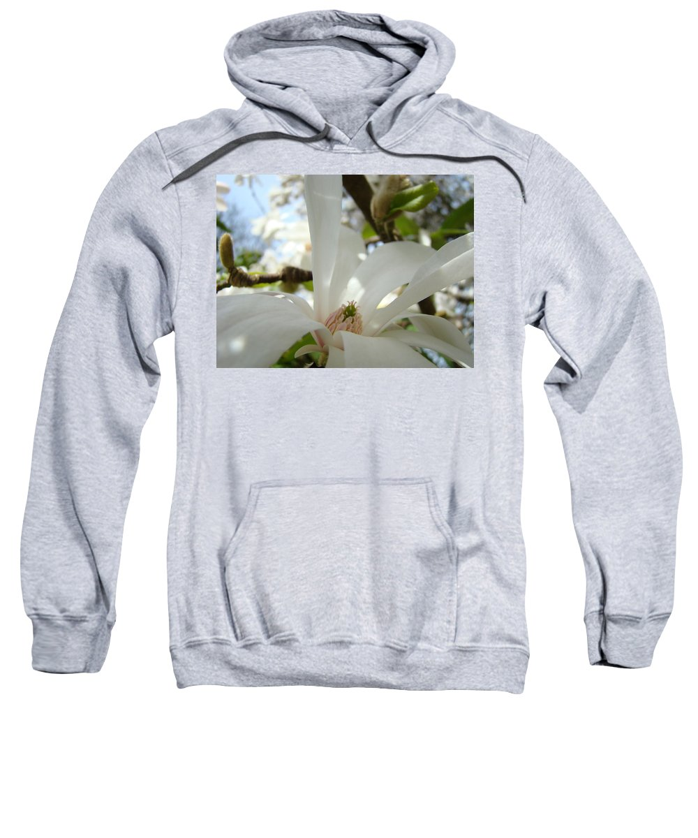 Magnolia Sweatshirt featuring the photograph Magnolia Flowers White Magnolia Tree Flower Art Spring Baslee Troutman by Baslee Troutman
