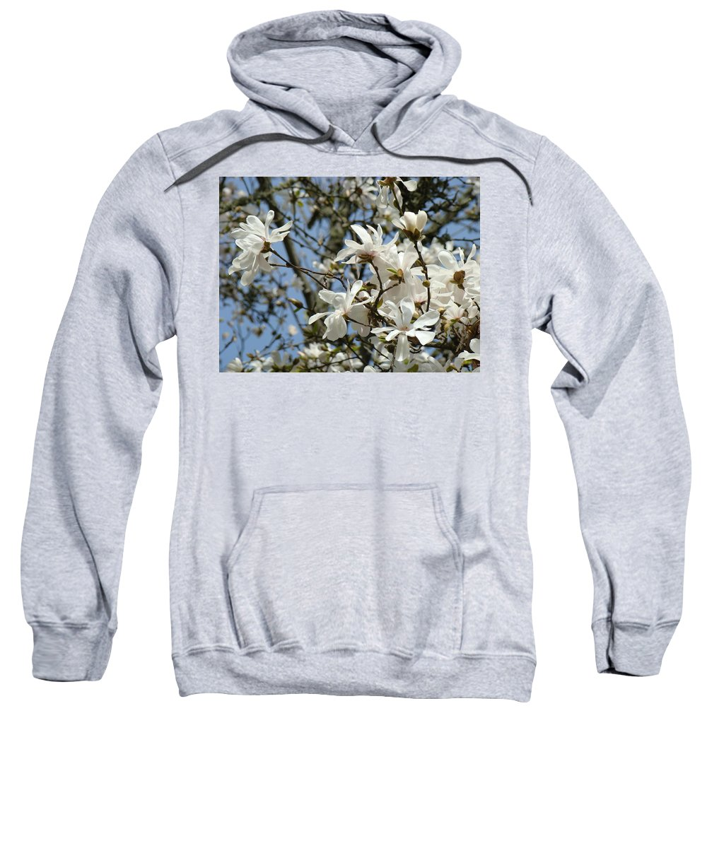 Magnolia Sweatshirt featuring the photograph Magnolia Flowers White Magnolia Tree Flowers Art Prints by Baslee Troutman