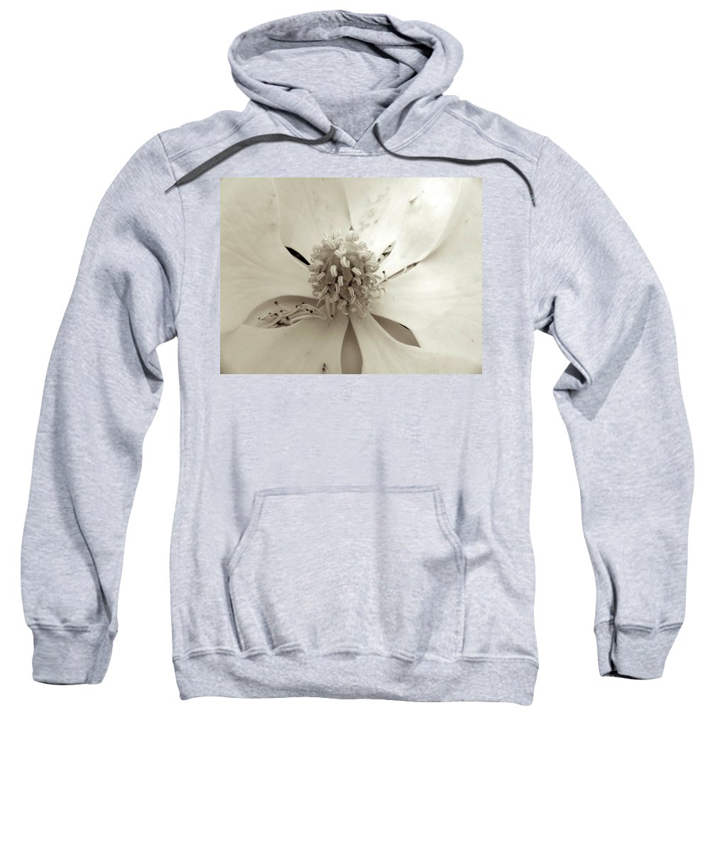 Flower Sweatshirt featuring the photograph Magnolia by Shannon Turek