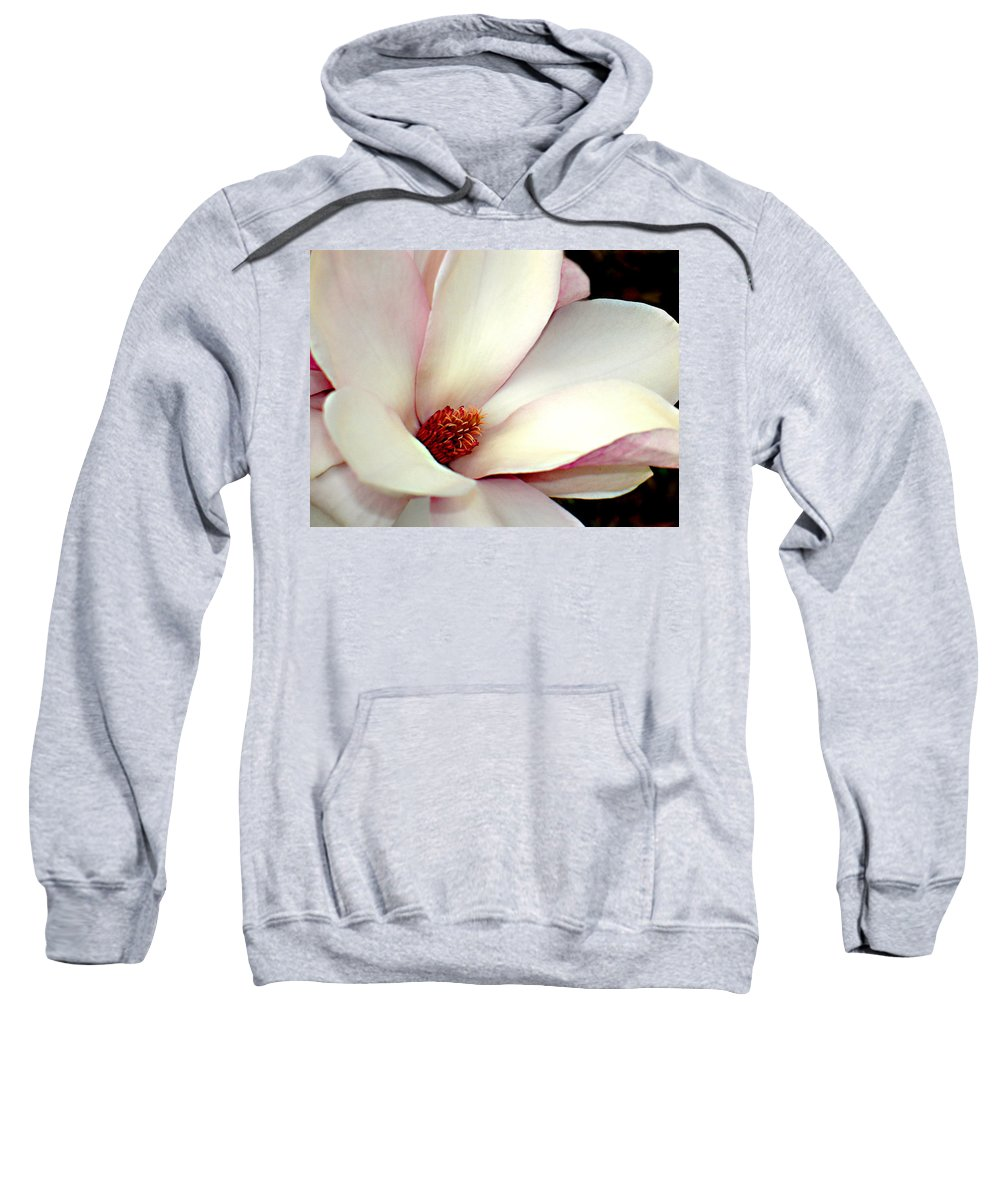 Floral Sweatshirt featuring the photograph Magnolia by Steve Karol