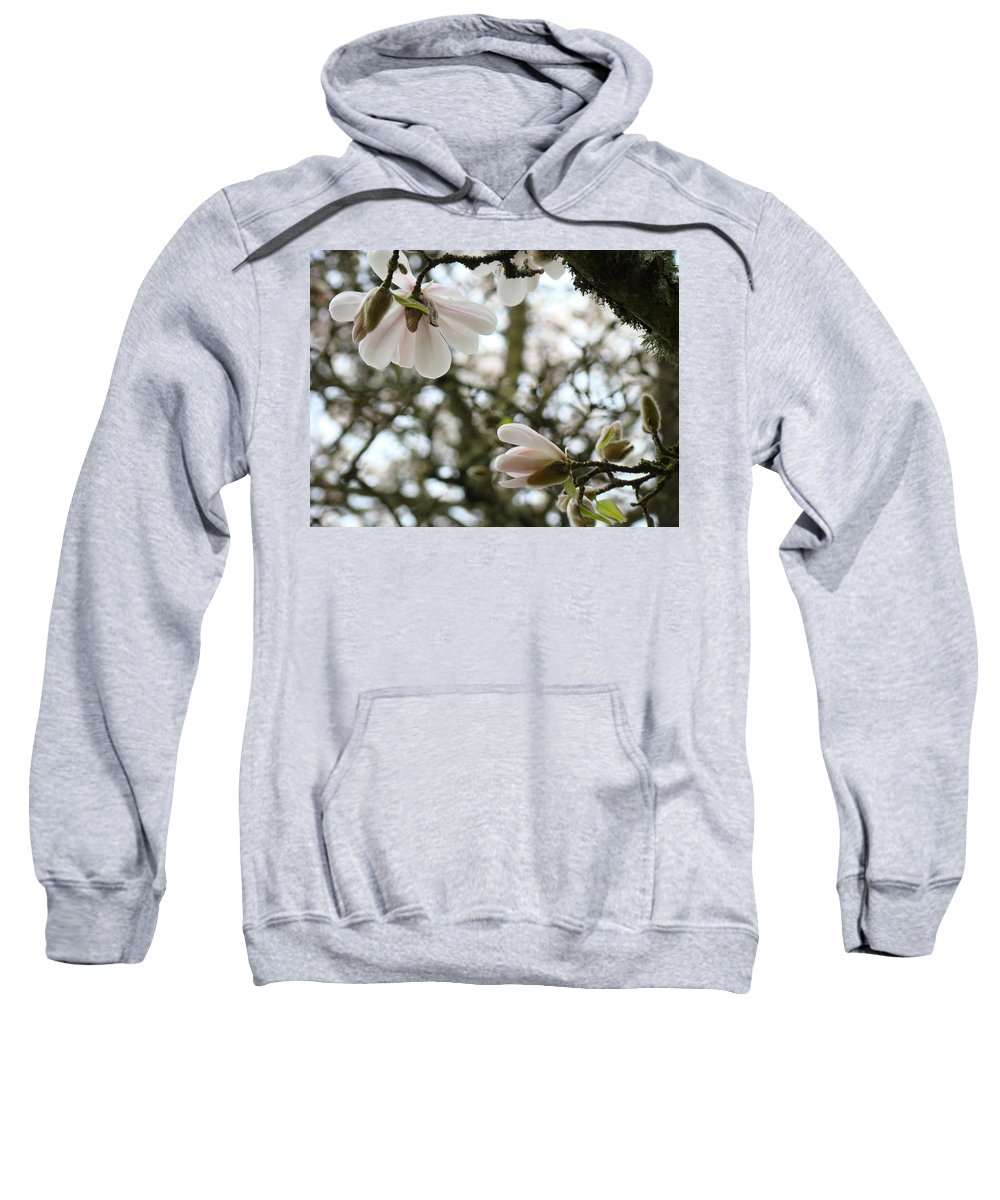 Magnolia Sweatshirt featuring the photograph Magnolia Tree Flowers Pink White Magnolia Flowers Spring Artwork by Baslee Troutman