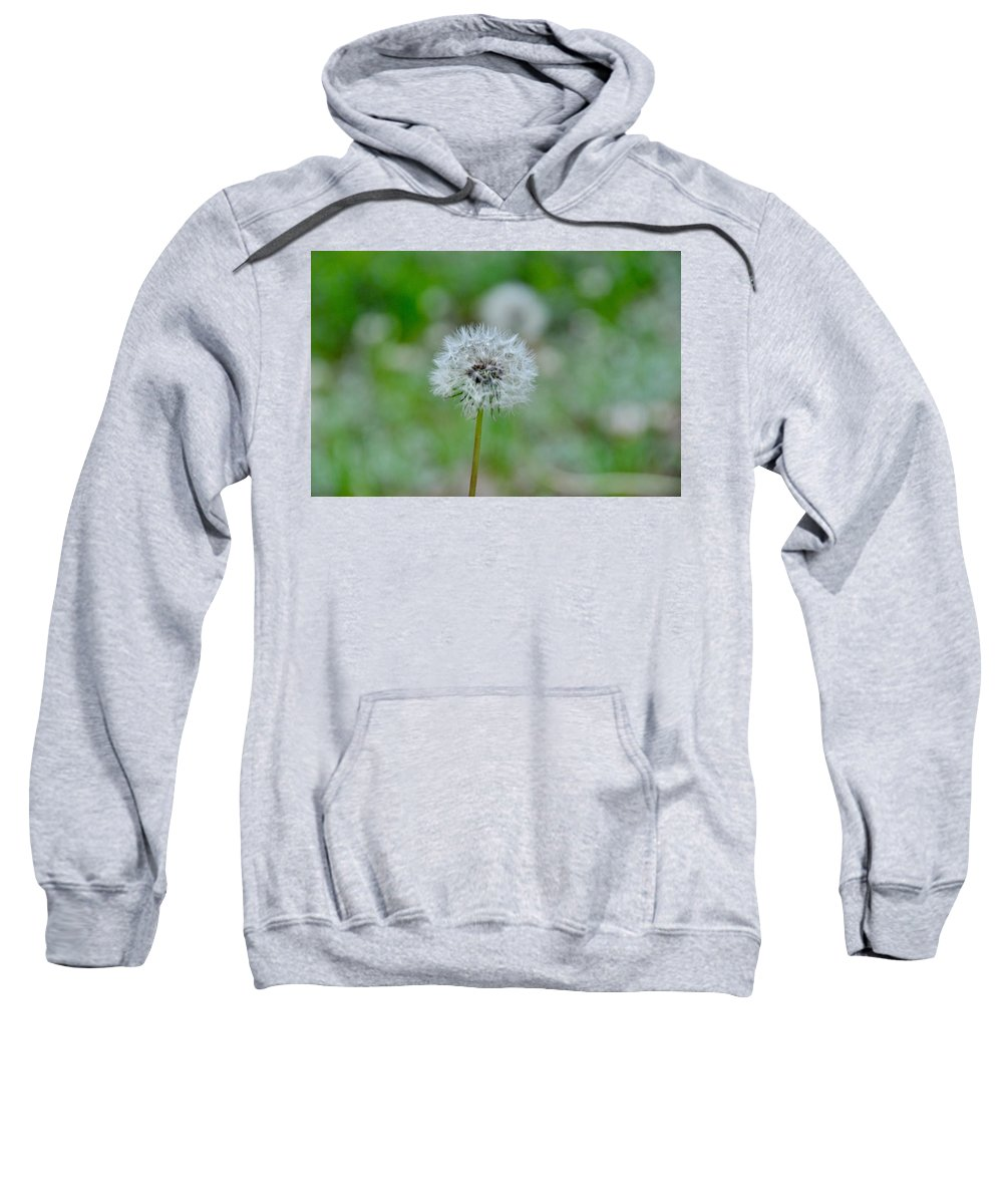 Dandelion Sweatshirt featuring the photograph Make A Wish by Csilla Florida