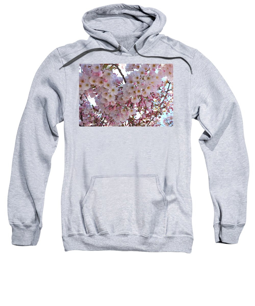 Pink Blossoms Sweatshirt featuring the photograph Many Pink Blossoms by Carol Groenen