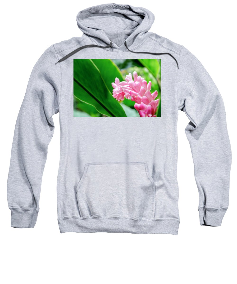 Flowers Sweatshirt featuring the photograph Many Pink Petals by Daniel Murphy