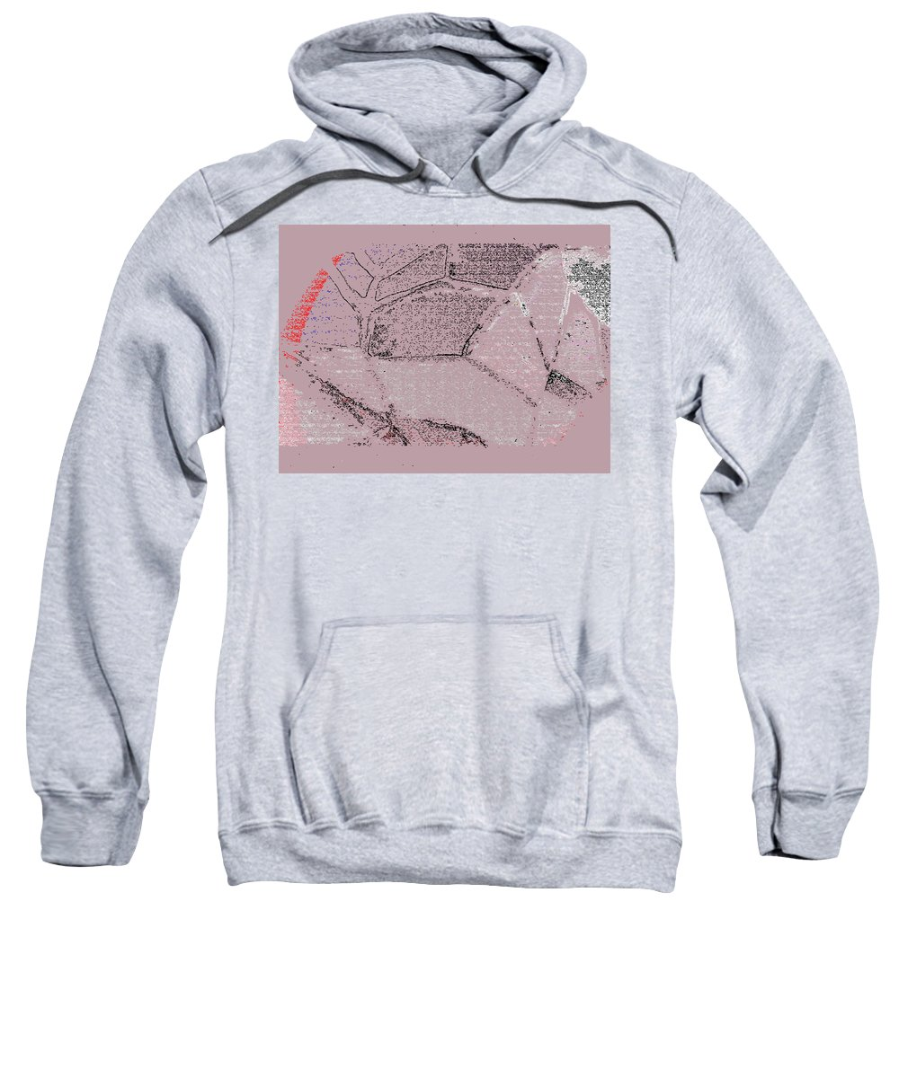 Abstract Sweatshirt featuring the digital art Map Of The Park by Lenore Senior
