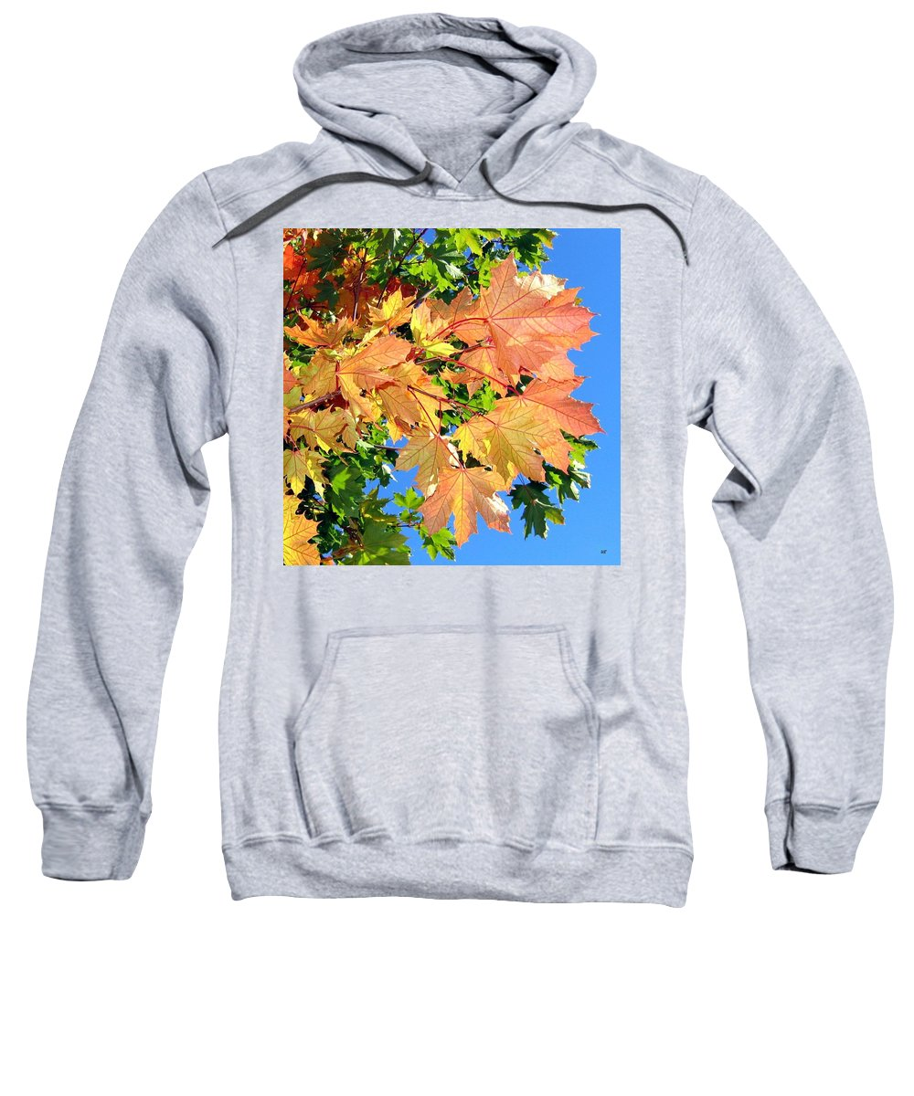 Autumn Sweatshirt featuring the photograph Maple Mania 1 by Will Borden
