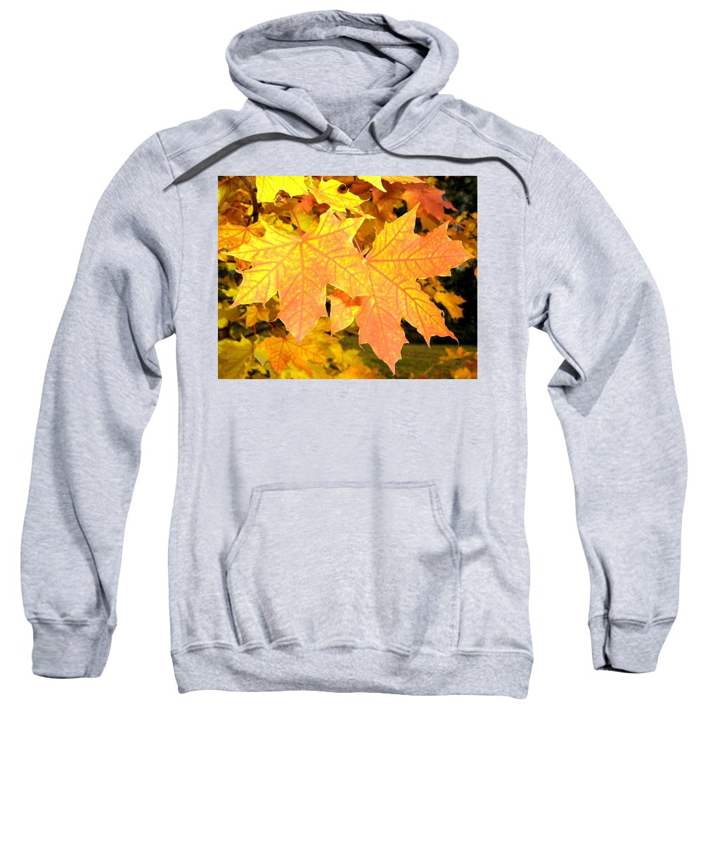 Autumn Sweatshirt featuring the photograph Maple Mania 2 by Will Borden