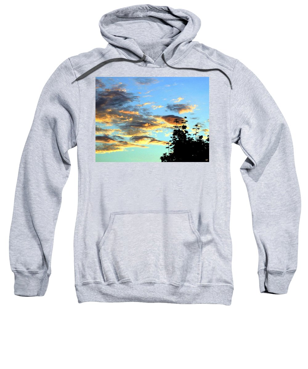 Maple Tree Sweatshirt featuring the photograph Maple Silhouette by Will Borden