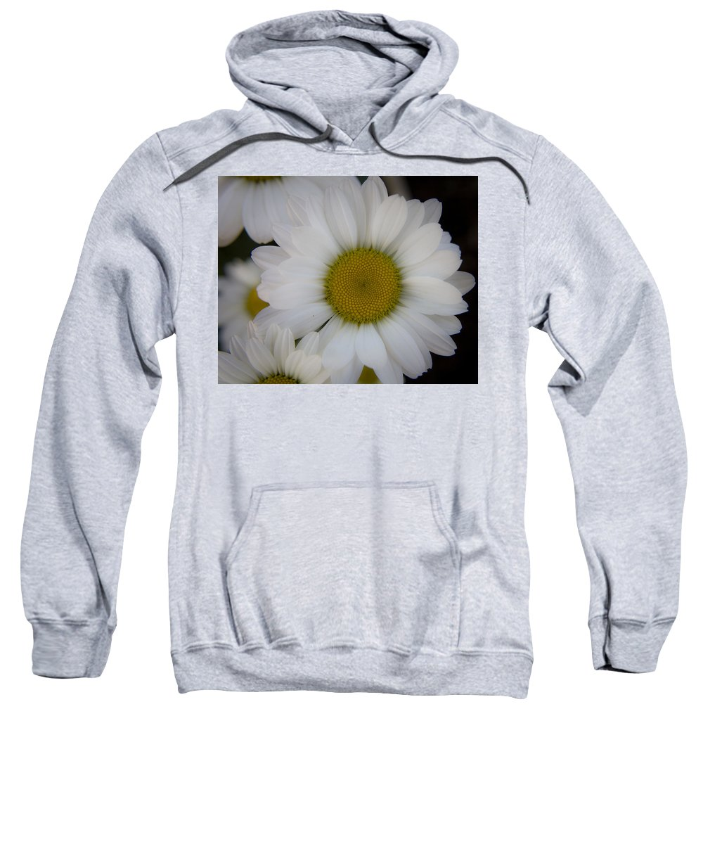 Marguerite Sweatshirt featuring the photograph Marguerite Daisies by Teresa Mucha
