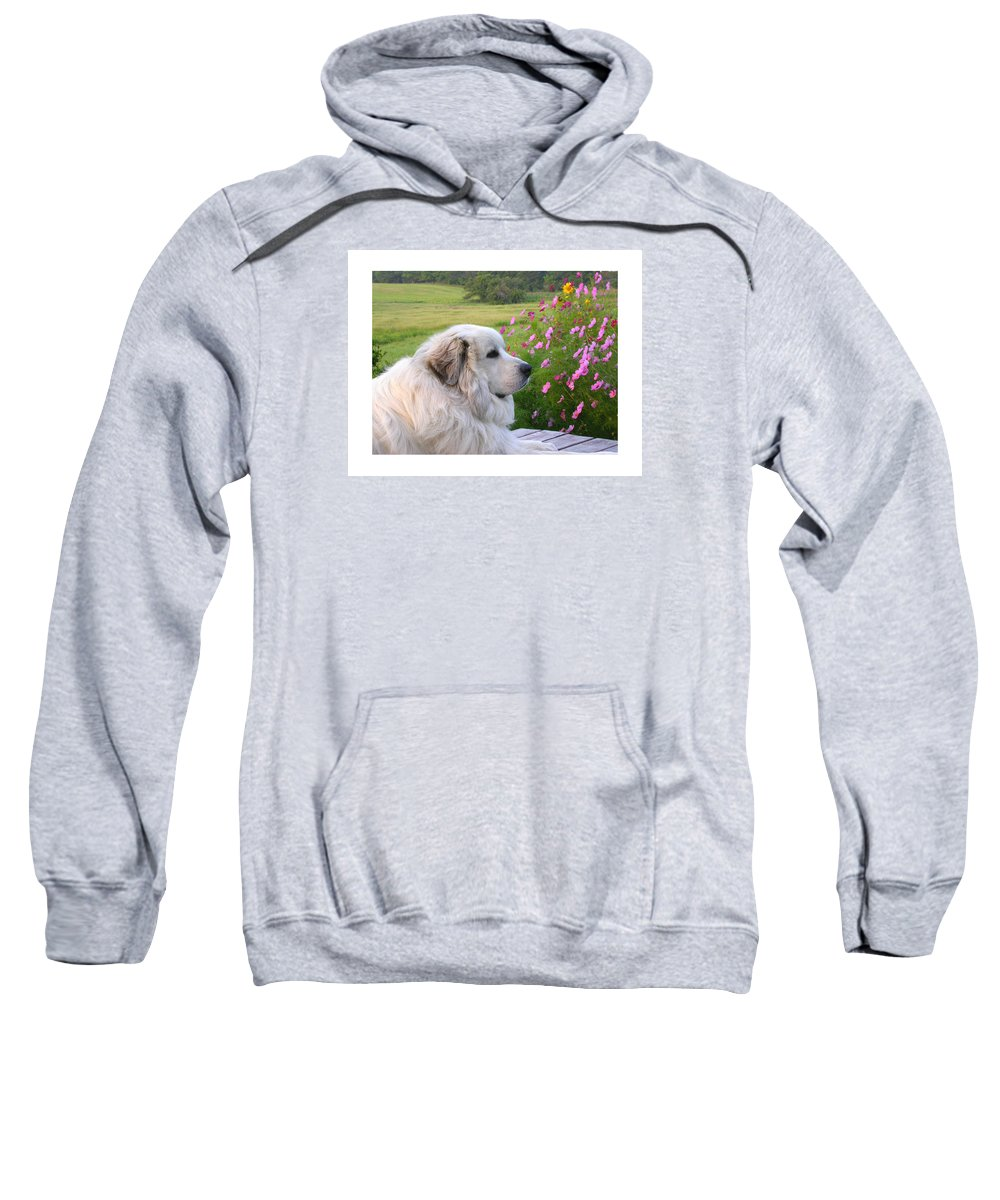 Great Pyrenees Sweatshirt featuring the photograph Maurice by Linda Murphy