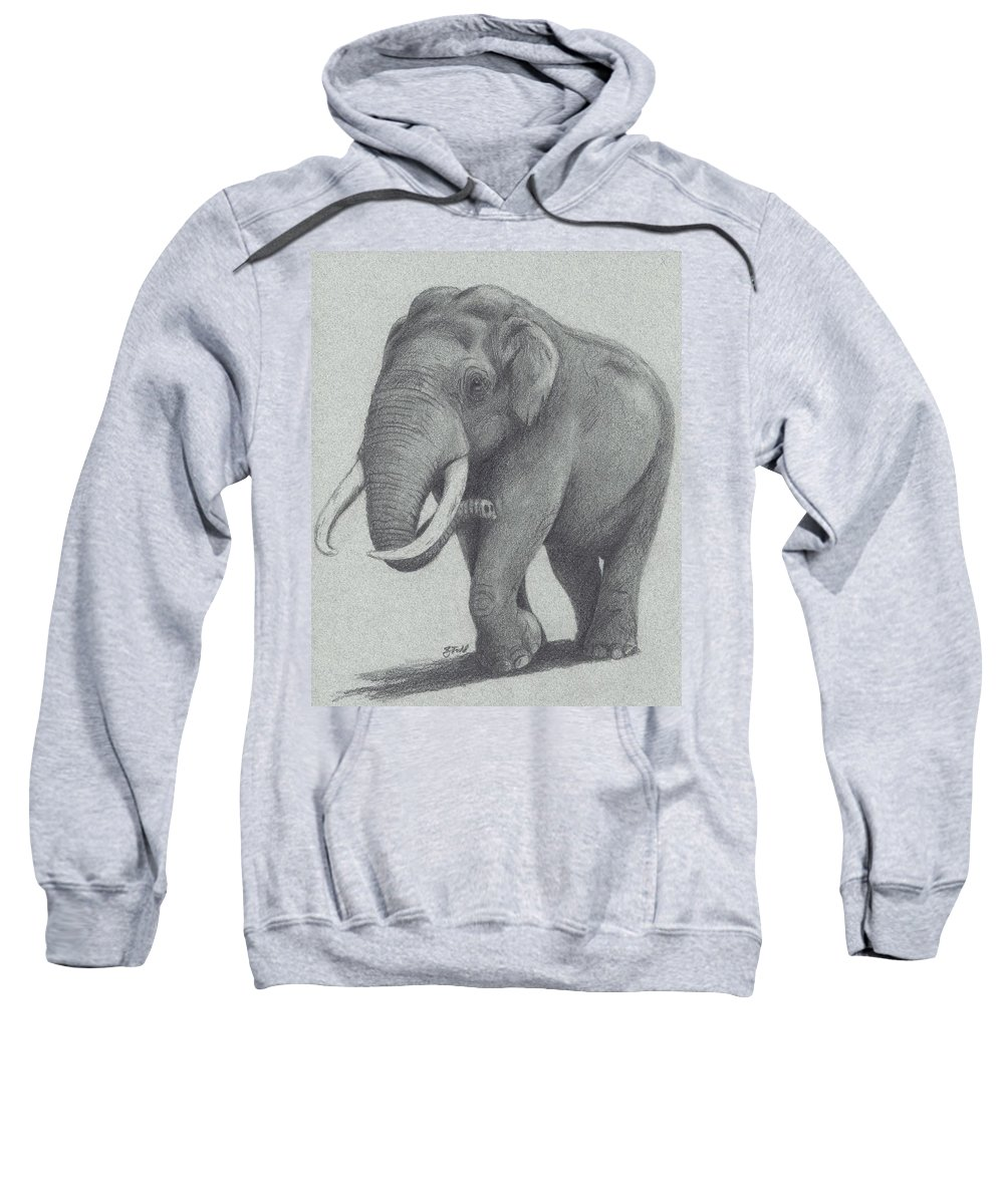 Asian Elephant Sweatshirt featuring the drawing Maximus by Zachary Todd