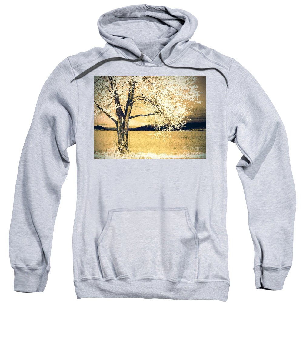 Tree Sweatshirt featuring the photograph May 5 2010 by Tara Turner