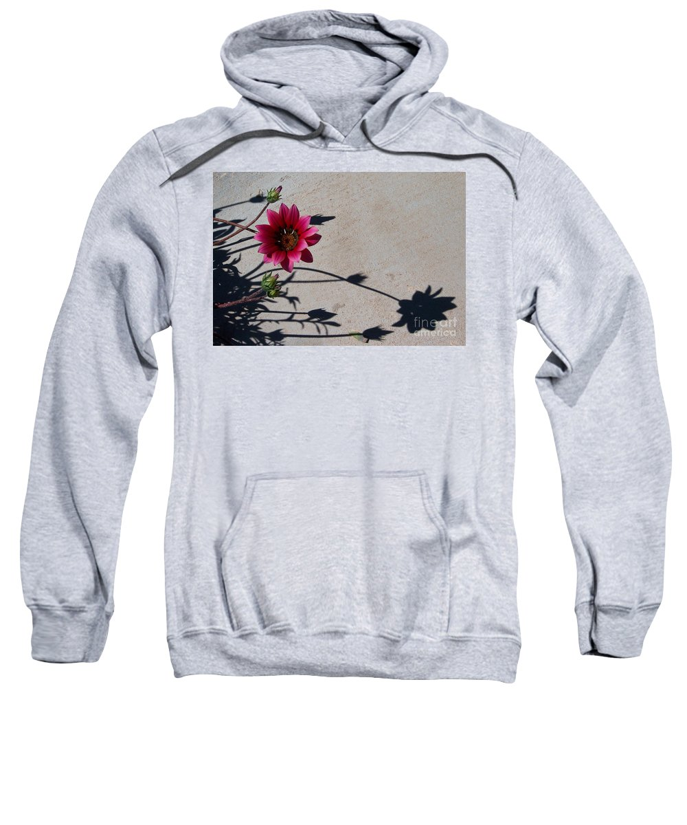 Flowers Sweatshirt featuring the photograph Me And My Shadow by Kathy McClure