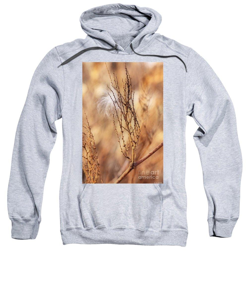 Milkweed Sweatshirt featuring the photograph Milkweed In The Breeze by Deborah Benoit