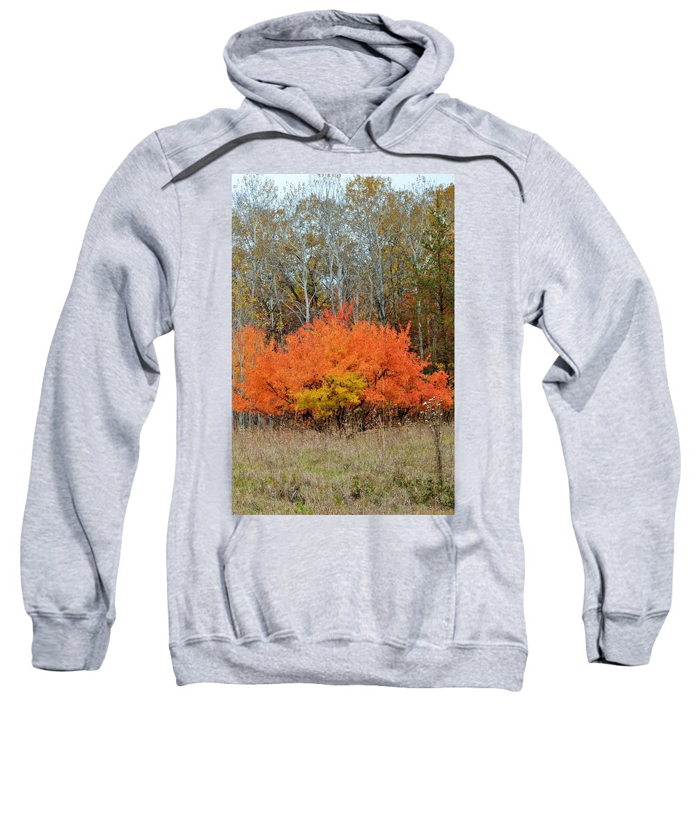 Autumn Sweatshirt featuring the photograph Minnesota Autumn 57 by Kimberly Benedict