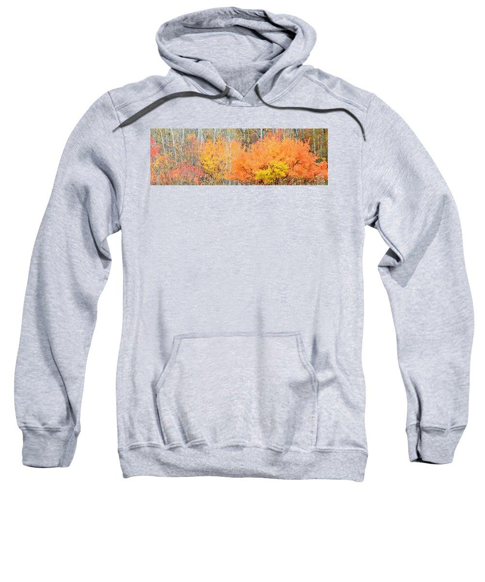 Autumn Sweatshirt featuring the photograph Minnesota Autumn 58 by Kimberly Benedict
