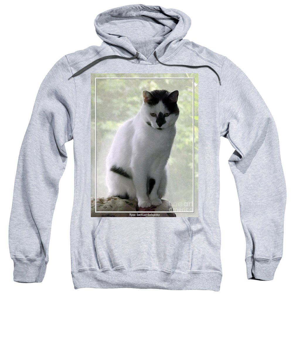 Cat Sweatshirt featuring the photograph Miss Jerrie Cat With Watercolor Effect by Rose Santuci-Sofranko
