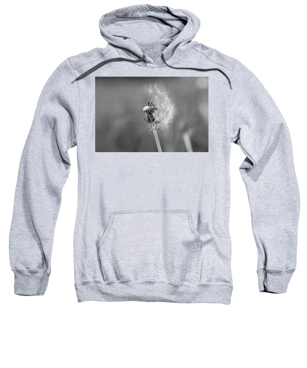 Dandelion Sweatshirt featuring the photograph Monochrome Beauty by Stacey Scott