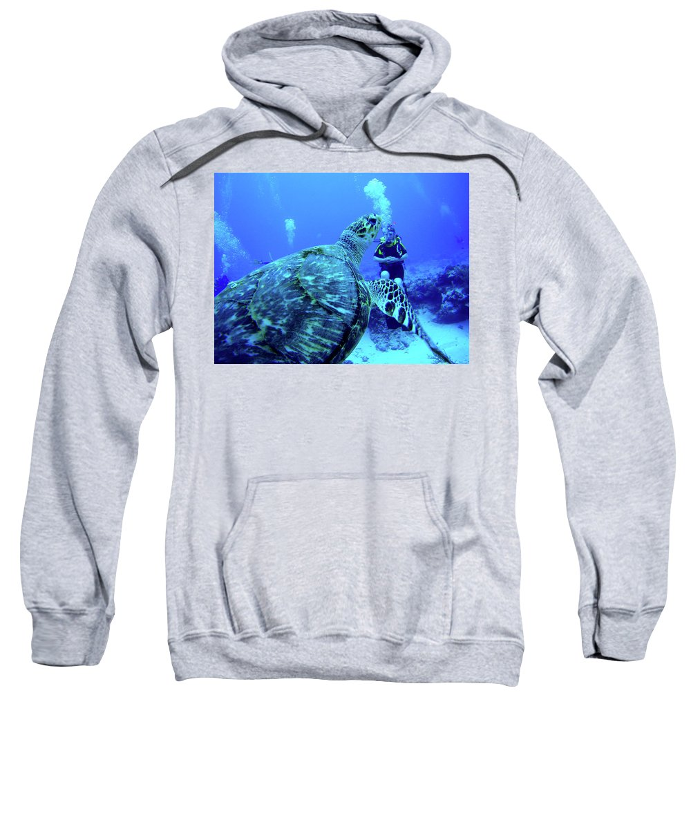 Hawksbill Sweatshirt featuring the photograph Monster Turtle Attacks Jeanne by Bob Foudriat