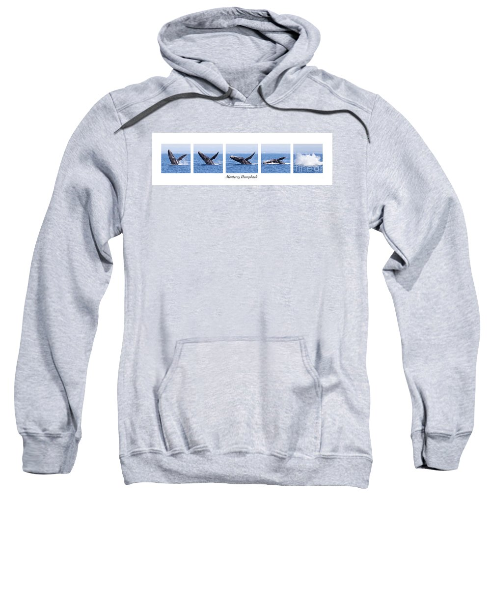 Monterey Bay Sweatshirt featuring the photograph Monterey Humpback by Candice Zee