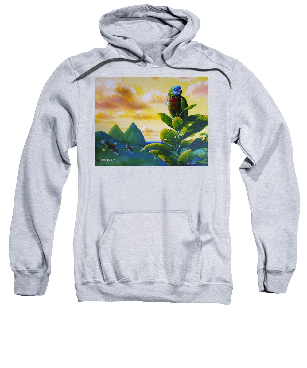 Chris Cox Sweatshirt featuring the painting Morning Glory - St. Lucia Parrots by Christopher Cox